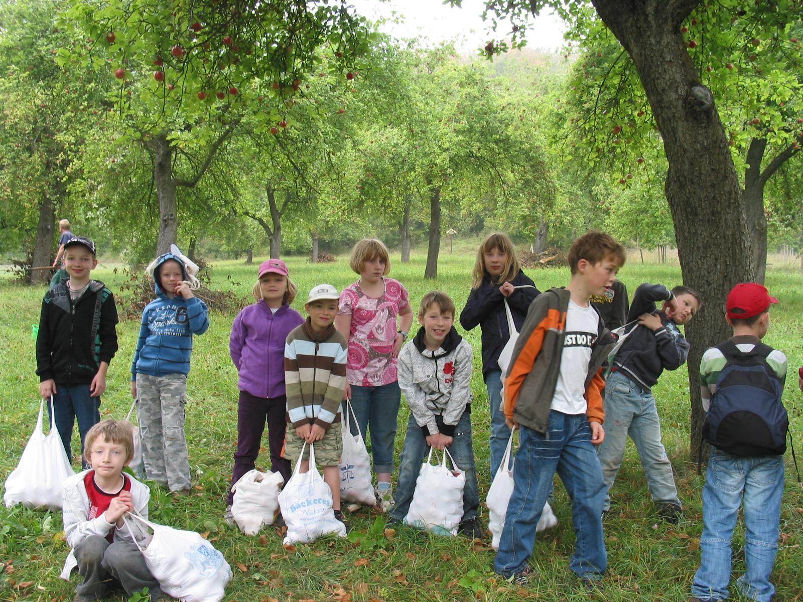 Grundschüler aus Keilhau und Rudolstadt als Erntehelfer auf der Keilhauer Streuobstwiese