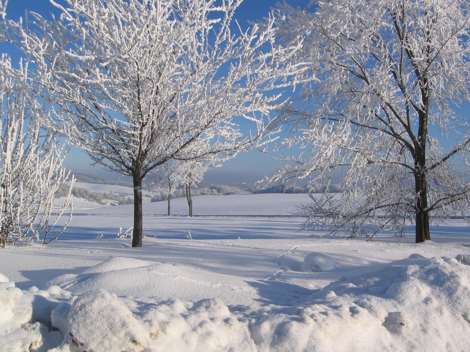 Winter zum Jahresanfang